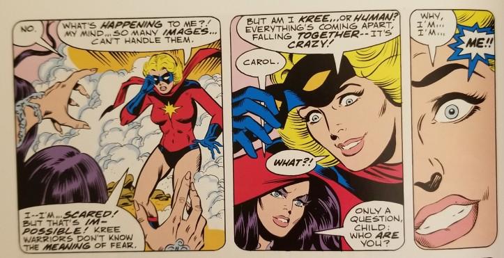 Ms Marvel Vol 1 Im Me